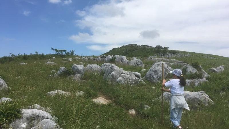 石灰岩がゴロゴロ落ちている平尾台